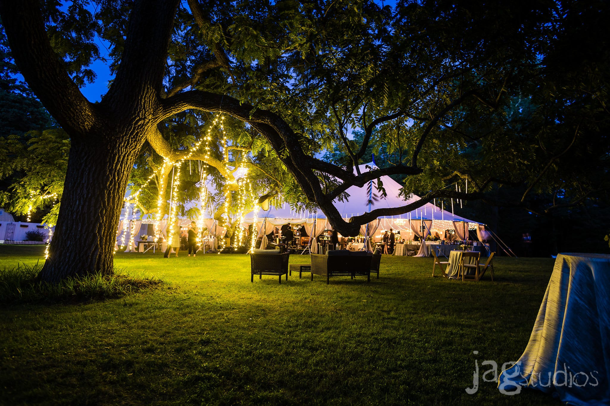 Midnight Summers Dream Wedding inspiration hanging tree lights