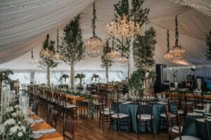 tall lush birch trees in topnotch wedding tent